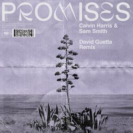 ฟังเพลงอัลบั้ม Promises (David Guetta Remix)