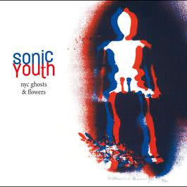 NYC Ghosts & Flowers 2000 Sonic Youth