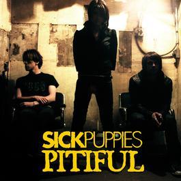 Pitiful 2008 Sick Puppies