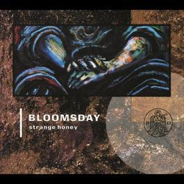 Strange Honey 1990 Bloomsday