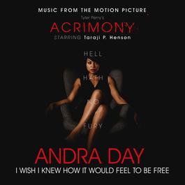 """ฟังเพลงอัลบั้ม I Wish I Knew How It Would Feel to Be Free (From Tyler Perry's """"Acrimony"""")"""