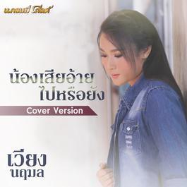 ฟังเพลงอัลบั้ม น้องเสียอ้ายไปหรือยัง (Cover) - Single