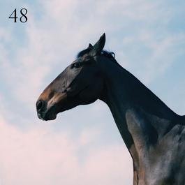 ฟังเพลงอัลบั้ม 48
