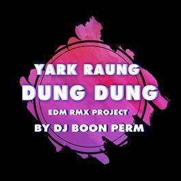 ฟังเพลงอัลบั้ม อยากร้องดังดัง (EDM RMX PROJECT) - Single