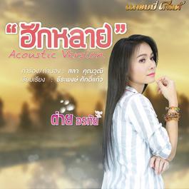 ฟังเพลงอัลบั้ม ฮักหลาย (acoustic version) - Single