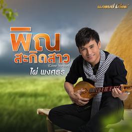 ฟังเพลงอัลบั้ม พิณสะกิดสาว (Cover) - Single
