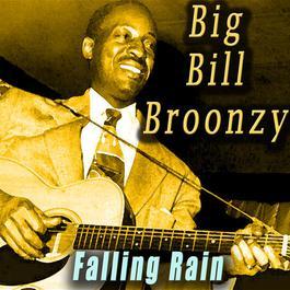 ฟังเพลงอัลบั้ม Falling Rain