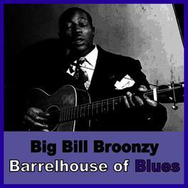 ฟังเพลงอัลบั้ม Barrelhouse of Blues