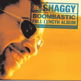 In The Summertime 2003 Shaggy; Rayvon
