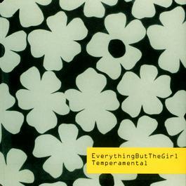 Temperamental (Original Mix) 2003 Everything But The Girl