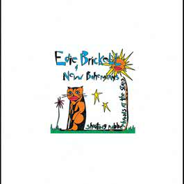 Shooting Rubberbands At The Stars 1988 Edie Brickell & New Bohemians