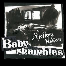 Shotter's Nation 2007 Babyshambles