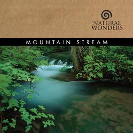 Mountain Stream 2006 Brian Hardin