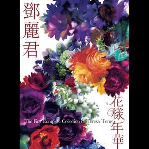 Hua Yang Nian Hua 2006 邓丽君