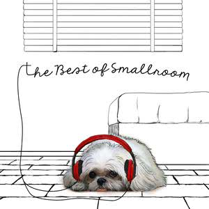 The Best of Smallroom 2017 Various Artists