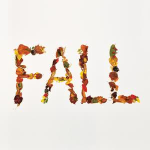 Fall 2012 Crucial Star