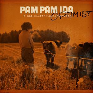 Optimist 2017 Pam Pam Ida