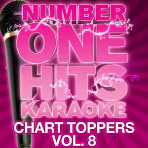 Number One Hits Karaoke: Chart Toppers Vol. 8 2011 Deja Vu