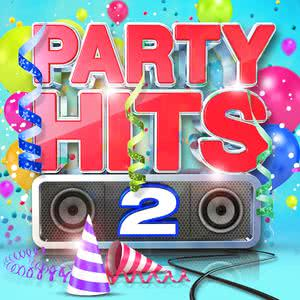 Party Hits 2 2013 Various Artists