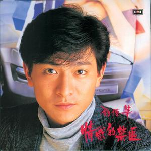 情感的禁區 2004 Andy Lau