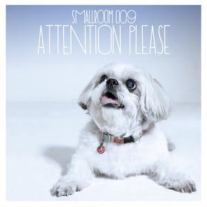 Smallroom 009 - Attention Please 2017 รวมศิลปิน Smallroom
