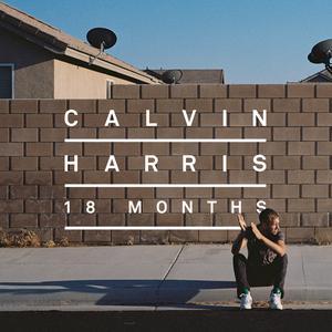 อัลบั้ม 18 Months