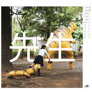 Sensei 2017 Seal Pillow