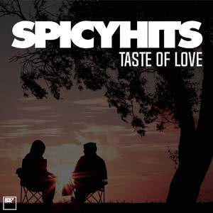 SPICYHITS - TASTE OF LOVE 2017 รวมศิลปิน