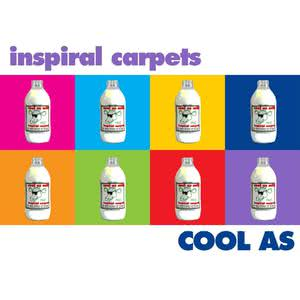 Cool As 2017 Inspiral Carpets
