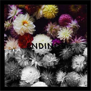 อัลบั้ม Endings