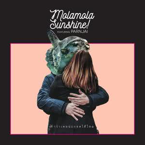 อัลบัม คำว่าเคยน่ะกอดได้ไหม (Instrumental) ศิลปิน Mola mola Sunshine!