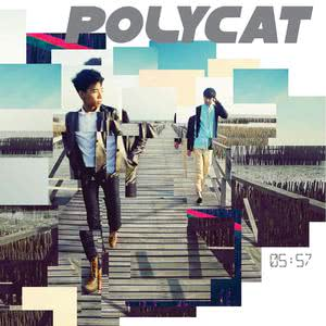 05:57 2017 Polycat