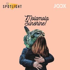 ฟังเพลงต่อเนื่อง Mola mola Sunshine!
