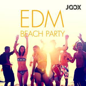 ฟังเพลงต่อเนื่อง EDM Beach Party