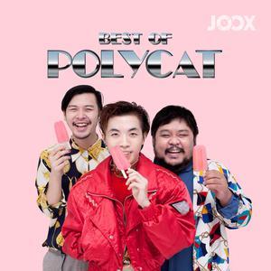 ฟังเพลงต่อเนื่อง Best of Polycat