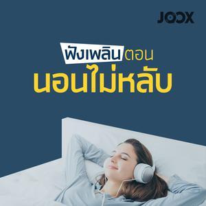 ฟังเพลงต่อเนื่อง ฟังเพลินตอนนอนไม่หลับ