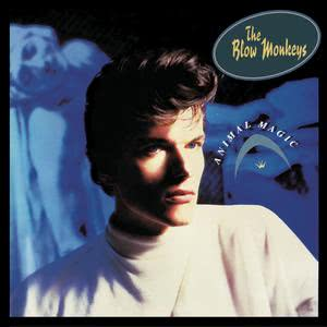 Album Animal Magic from The Blow Monkeys