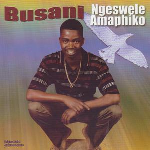 Album Ngeswele Amaphiko from Busani