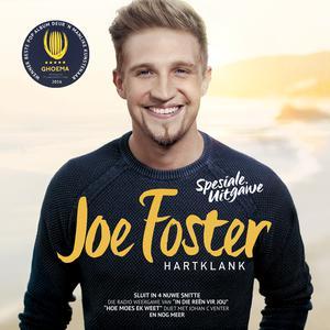 Listen to Vir My Gemaak song with lyrics from Joe Foster