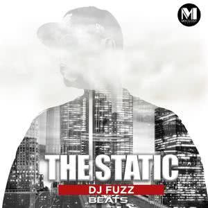 Album The Static Beats from DJ Fuzz