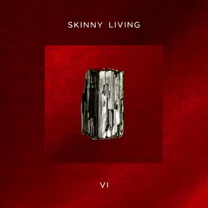 Listen to Let Me In song with lyrics from Skinny Living