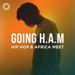 Going H.A.M: Hip Hop & Africa Meet