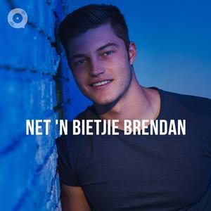 Updated Playlists Net 'n Bietjie Brendan