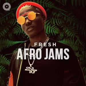 New Album Fresh Afro Jams