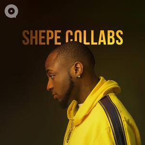 Shepe Collabs